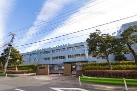 濱正悟の出身大学高校や中学はどこ?学歴とプロフィールを紹介!